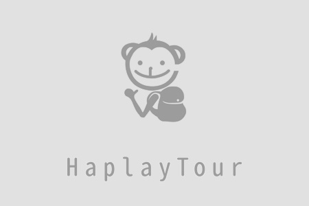 Haplaytour Limited Promotion Kaohsiung Qijin Sizihwan Pier 2 Art Center  Private Car One Day Trip for 10 hrs only at NTD3800