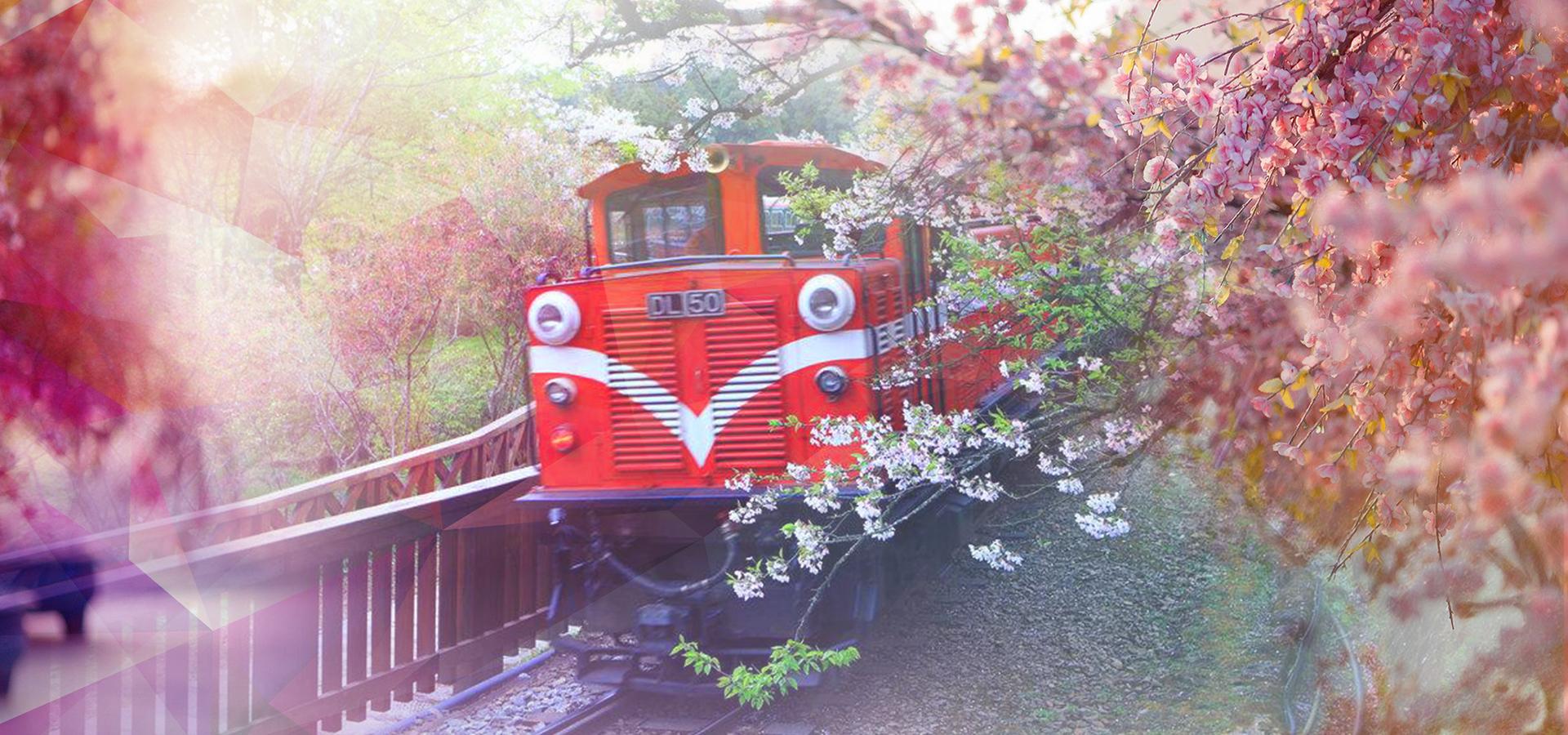 專業包車旅遊帶你臺灣走透透?